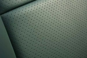 Ford Mustang Buffalino Leder Groen Detail Perforatie